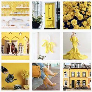 galleria instagram feed estetica